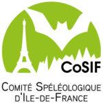 CoSIF_logo